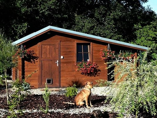 Zahradní domky Claudia - Claudia 300x250 28 mm